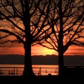 videoblocks-lake-geneva-sunset-vevey-switzerland-travel-therapy_btadmab2g_thumbnail-full01